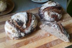 seigle, blé semi-complet